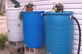 Rain Barrels For household : Simple solution
