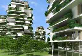 Landscape Gardening Steps