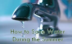 How to Save Water During the Summer